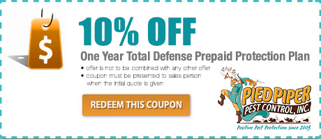 10% Pest Control Coupon