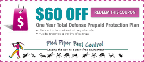 $60 Pest Control Coupon